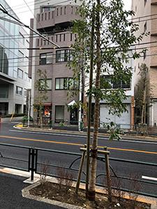 20181223-ki01.jpg